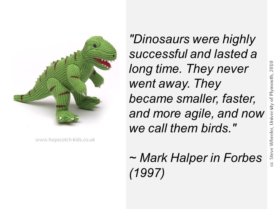 Dinosaurs were highly successful and lasted a long time.