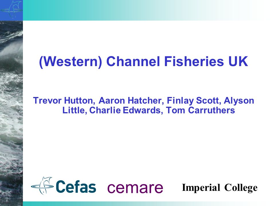 (Western) Channel Fisheries UK Trevor Hutton, Aaron Hatcher, Finlay Scott, Alyson Little, Charlie Edwards, Tom Carruthers cemare Imperial College