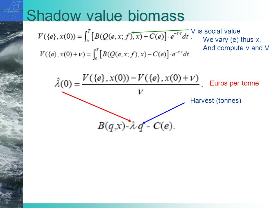 Shadow value biomass Harvest (tonnes) Euros per tonne V is social value We vary (e) thus x, And compute v and V