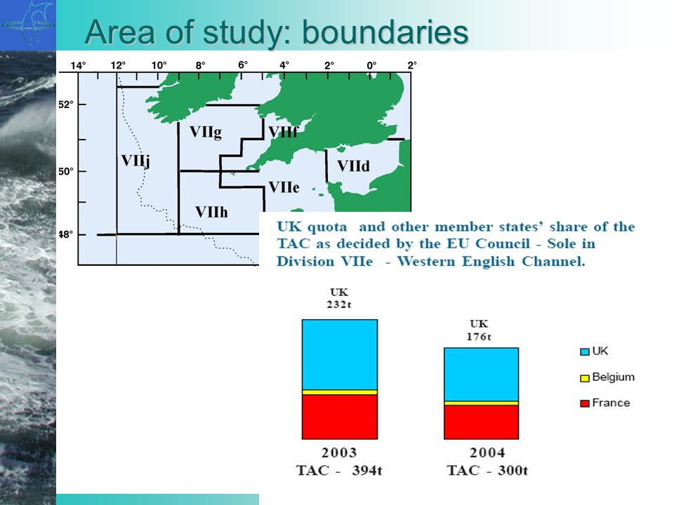 Area of study: boundaries
