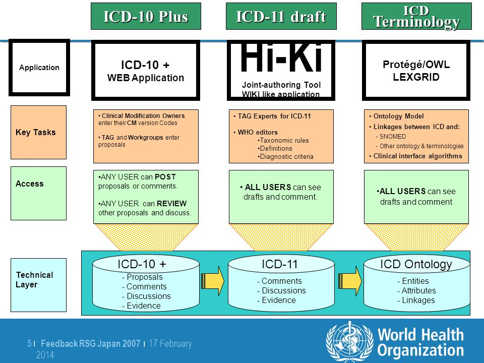 Feedback RSG Japan 2007   17 February 2014 17 February 2014 6  6   Hierarchy of Hiki Authority by ICD Domain 0 Revision Steering Committee 1Revision Domain/Topic Working Groups 2Accredited Experts Designated by Working Group Members 3Accredited Persons Designated by Experts 4Registered Interested Persons (Public)