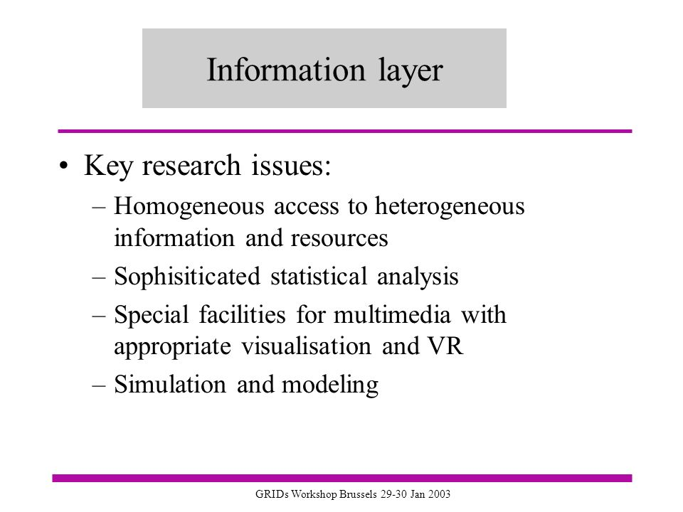 GRIDs Workshop Brussels 29-30 Jan 2003 Information layer Key research issues: –Homogeneous access to heterogeneous information and resources –Sophisiticated statistical analysis –Special facilities for multimedia with appropriate visualisation and VR –Simulation and modeling