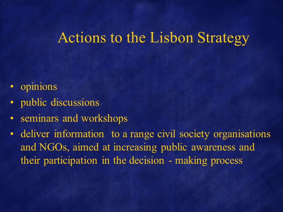 Actions to the Lisbon Strategy opinions public discussions seminars and workshops deliver information to a range civil society organisations and NGOs, aimed at increasing public awareness and their participation in the decision - making process