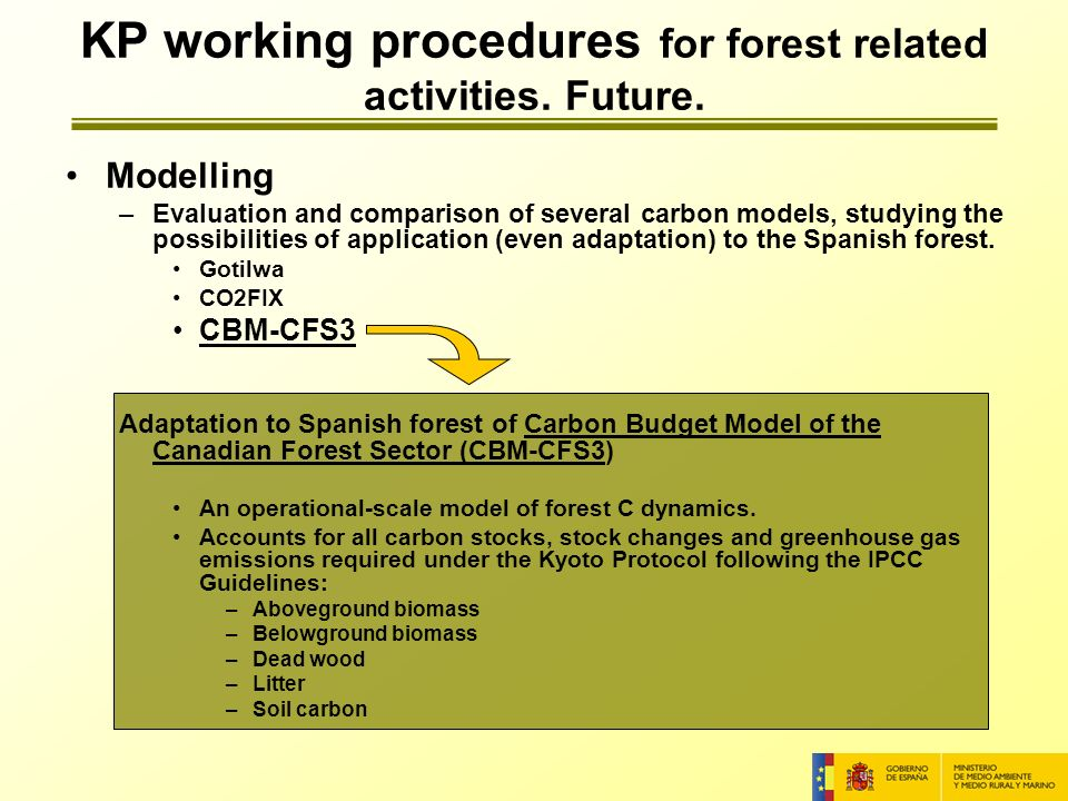 Modelling –Evaluation and comparison of several carbon models, studying the possibilities of application (even adaptation) to the Spanish forest.