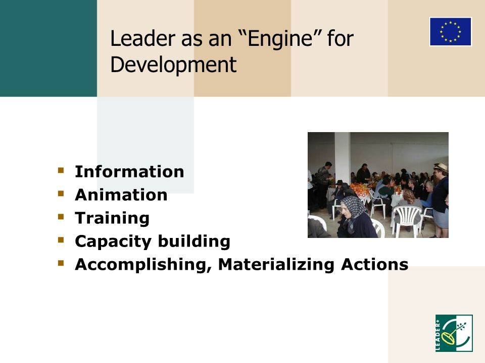 Leader as an Engine for Development Information Animation Training Capacity building Accomplishing, Materializing Actions