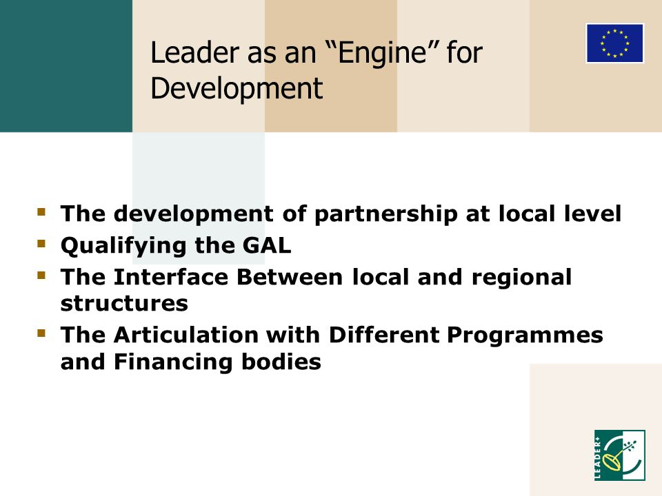 Leader as an Engine for Development The development of partnership at local level Qualifying the GAL The Interface Between local and regional structures The Articulation with Different Programmes and Financing bodies