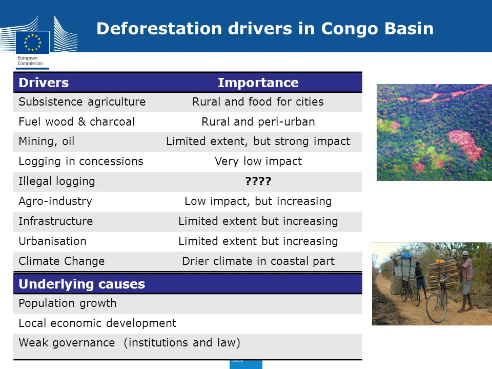Deforestation drivers in Congo Basin DriversImportance Subsistence agricultureRural and food for cities Fuel wood & charcoalRural and peri-urban Minin