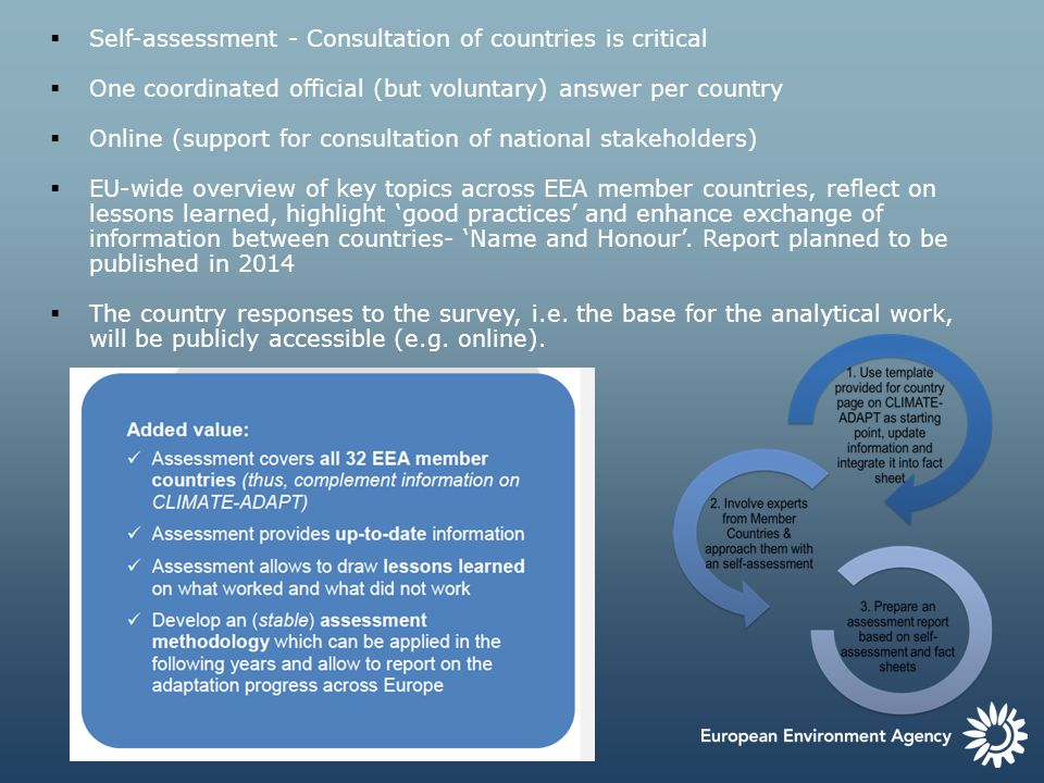 Self-assessment - Consultation of countries is critical One coordinated official (but voluntary) answer per country Online (support for consultation o