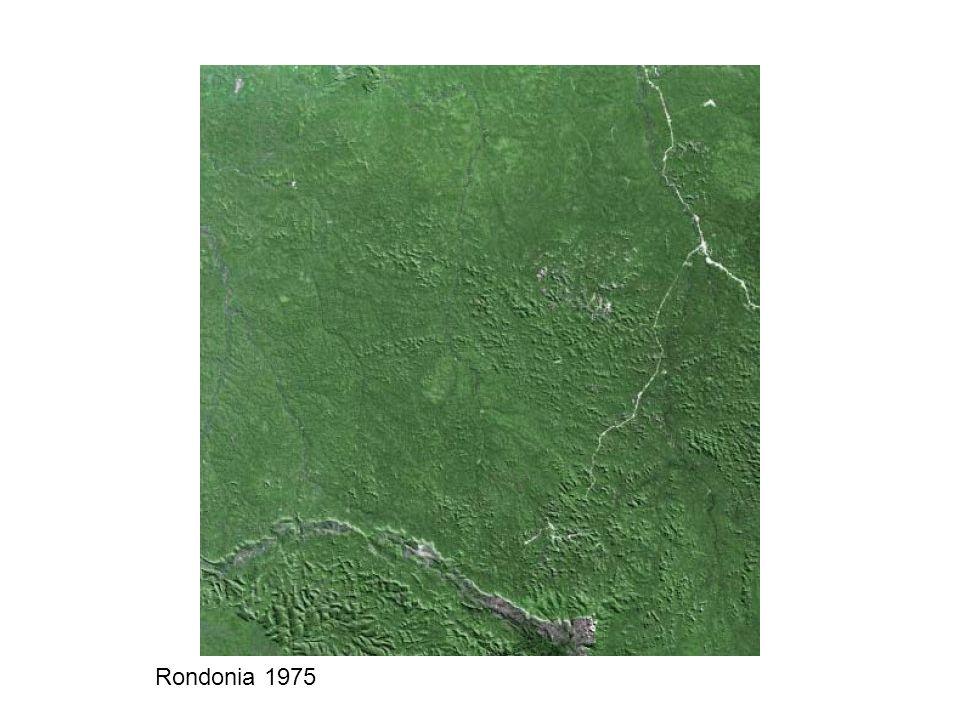 Rondonia 1975