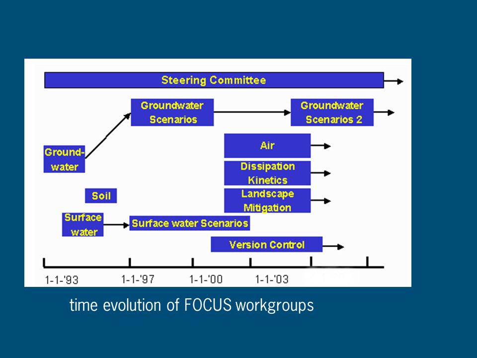 time evolution of FOCUS workgroups