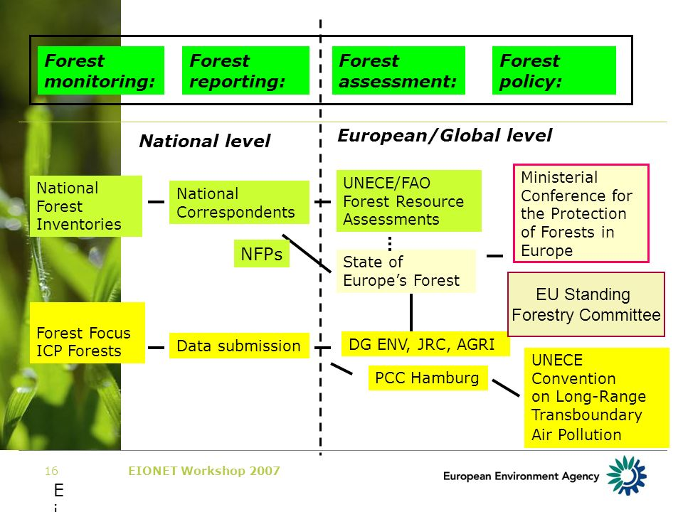 EIONET Workshop 200716 EiEi Forest monitoring: Forest reporting: Forest assessment: Forest policy: National level European/Global level National Forest Inventories Forest Focus ICP Forests UNECE/FAO Forest Resource Assessments National Correspondents Ministerial Conference for the Protection of Forests in Europe State of Europes Forest Data submission DG ENV, JRC, AGRI PCC Hamburg UNECE Convention on Long-Range Transboundary Air Pollution NFPs EU Standing Forestry Committee