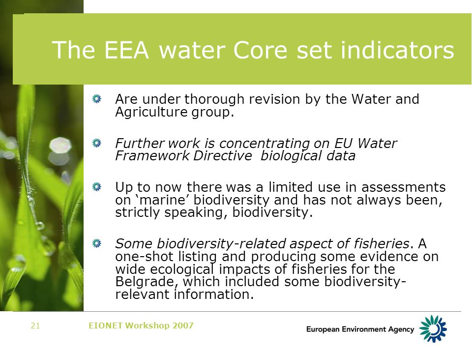 EIONET Workshop 200721 The EEA water Core set indicators Are under thorough revision by the Water and Agriculture group.