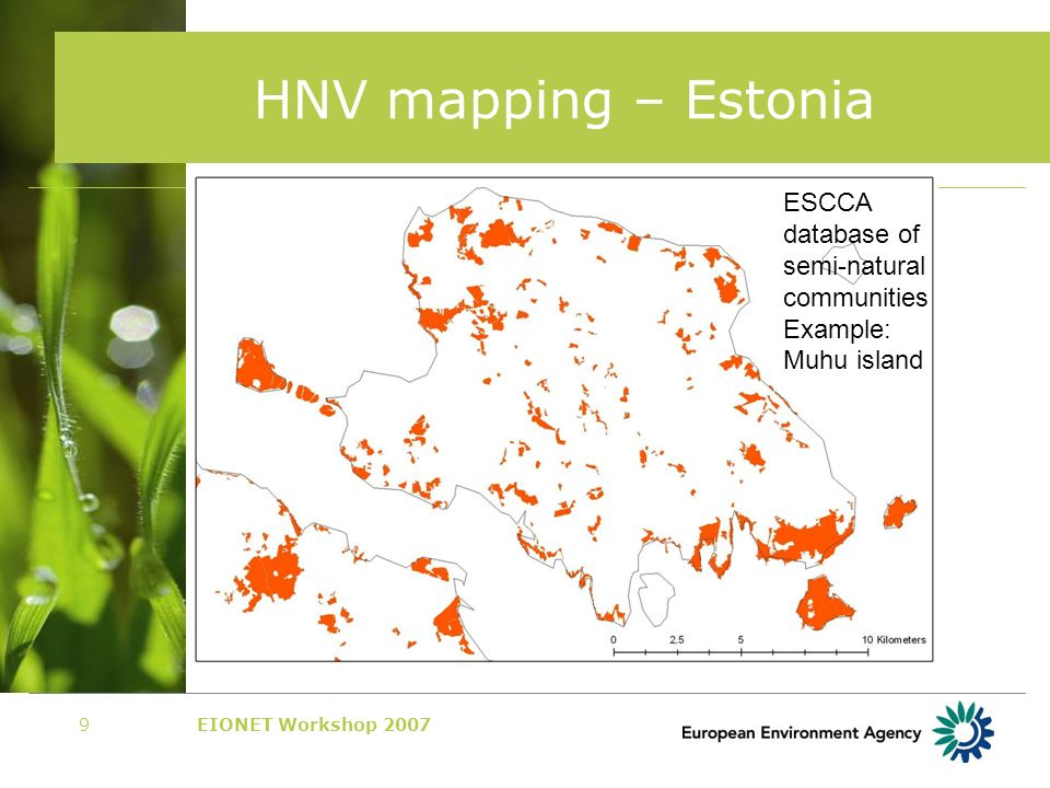 EIONET Workshop 200710 HNV mapping – Lithuania Natural Grasslands Inventory Example: Adutiskis area