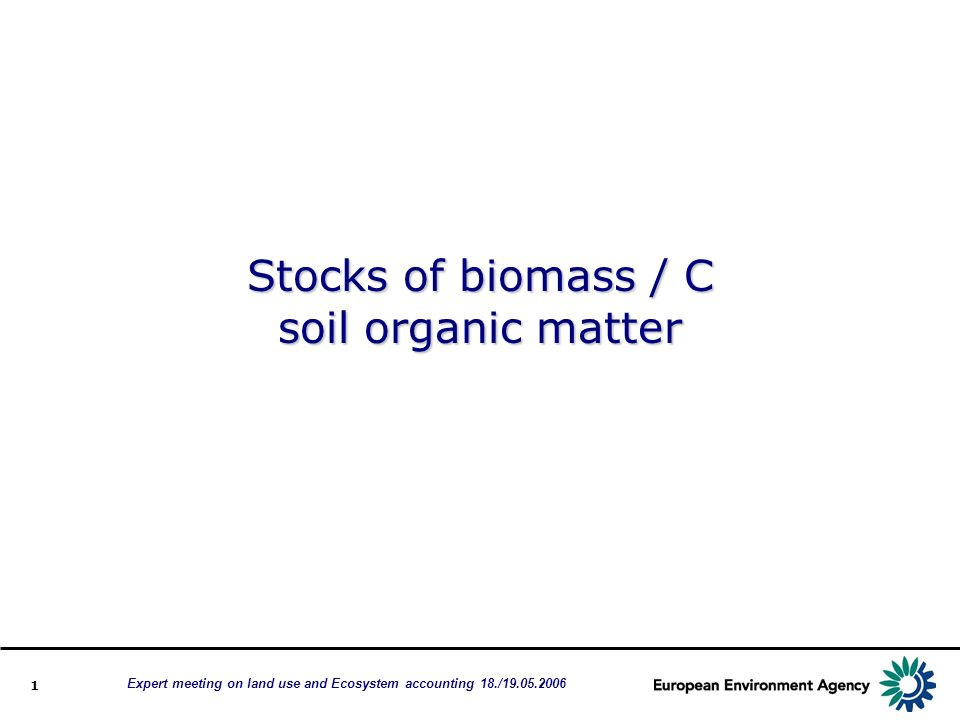 1 Stocks of biomass / C soil organic matter Expert meeting on land use and Ecosystem accounting 18./19.05.2006