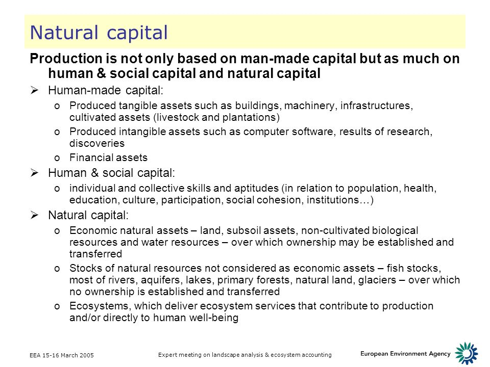 EEA 15-16 March 2005 Expert meeting on landscape analysis & ecosystem accounting Natural capital Production is not only based on man-made capital but