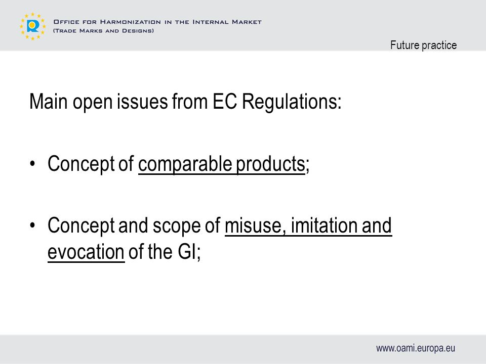 Future practice Main open issues from EC Regulations: Concept of comparable products; Concept and scope of misuse, imitation and evocation of the GI;
