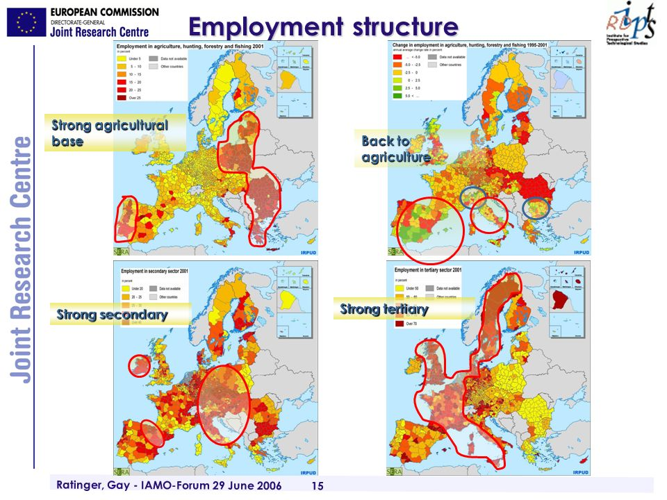 Ratinger, Gay - IAMO-Forum 29 June 2006 15 Employment structure Back to agriculture Strong agricultural base Strong tertiary Strong secondary