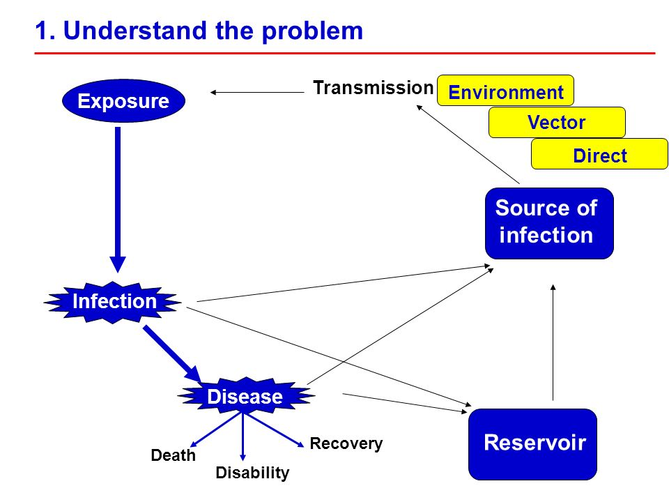 Disease Death Disability Recovery Source of infection Transmission Reservoir Vector Environment Direct Exposure Infection 1. Understand the problem