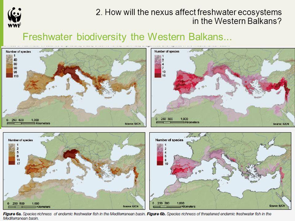Freshwater biodiversity the Western Balkans... 2.