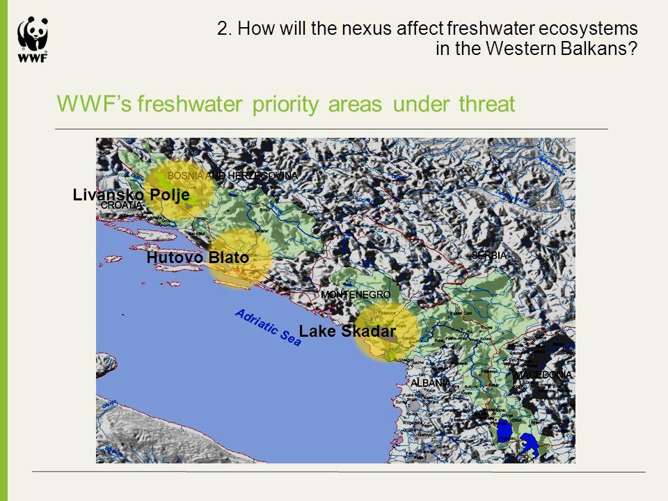 WWFs freshwater priority areas under threat Livansko Polje Lake Skadar Hutovo Blato 2. How will the nexus affect freshwater ecosystems in the Western