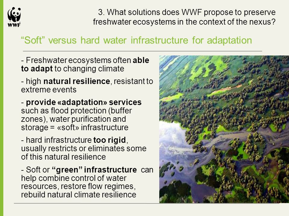 Soft versus hard water infrastructure for adaptation - Freshwater ecosystems often able to adapt to changing climate - high natural resilience, resistant to extreme events - provide «adaptation» services such as flood protection (buffer zones), water purification and storage = «soft» infrastructure - hard infrastructure too rigid, usually restricts or eliminates some of this natural resilience - Soft or green infrastructure can help combine control of water resources, restore flow regimes, rebuild natural climate resilience 3.