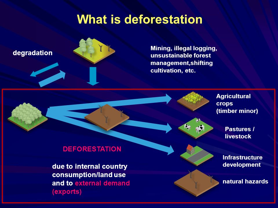 What is deforestation Mining, illegal logging, unsustainable forest management,shifting cultivation, etc.
