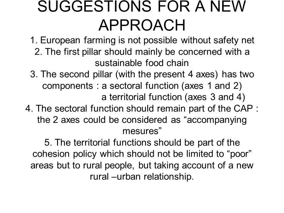 SUGGESTIONS FOR A NEW APPROACH 1. European farming is not possible without safety net 2.
