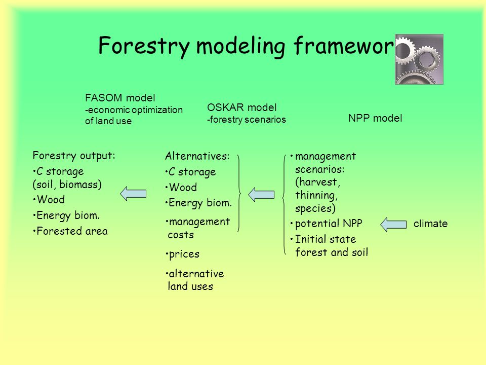 Forestry modeling framework Forestry output: C storage (soil, biomass) Wood Energy biom. Forested area Alternatives: C storage Wood Energy biom. manag