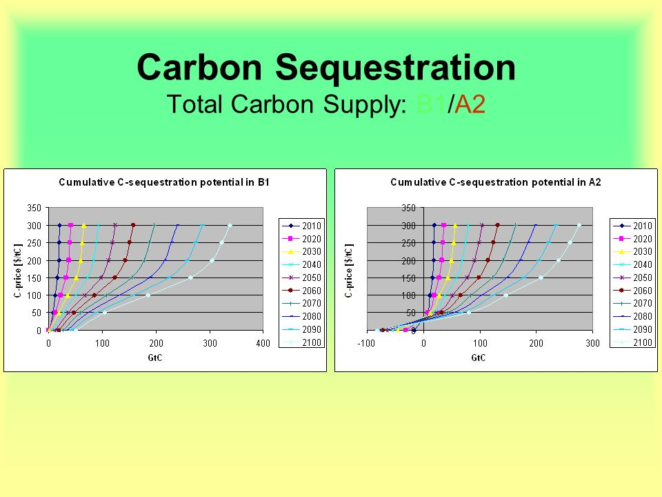 Carbon Sequestration Total Carbon Supply: B1/A2