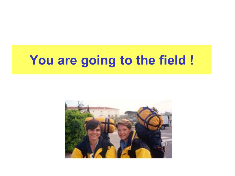 You are going to the field !