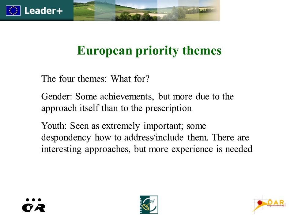 European priority themes The four themes: What for? Gender: Some achievements, but more due to the approach itself than to the prescription Youth: See