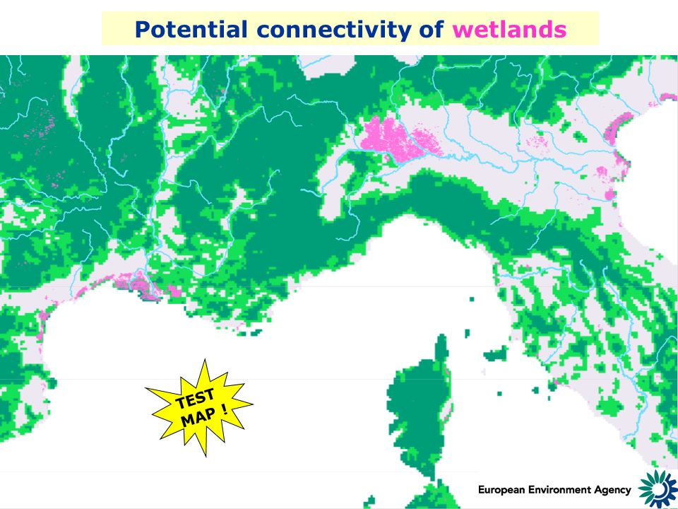 10-11 June 2004 Millennium Assessment/ AVEC/ EEA Workshop Potential connectivity of wetlands TEST MAP !