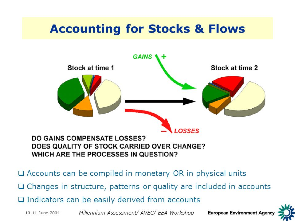 10-11 June 2004 Millennium Assessment/ AVEC/ EEA Workshop Accounting for Stocks & Flows Accounts can be compiled in monetary OR in physical units Chan