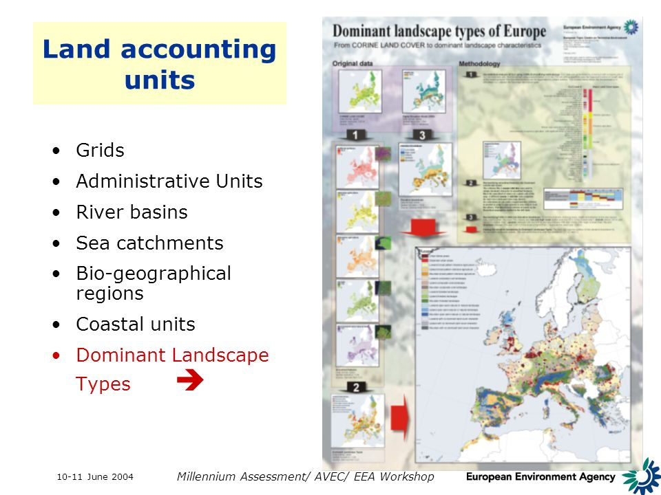 10-11 June 2004 Millennium Assessment/ AVEC/ EEA Workshop Land accounting units Grids Administrative Units River basins Sea catchments Bio-geographica