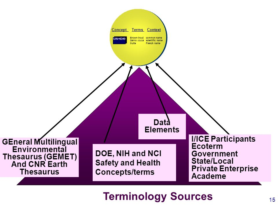 15 GEneral Multilingual Environmental Thesaurus (GEMET) And CNR Earth Thesaurus DOE, NIH and NCI Safety and Health Concepts/terms Data Elements Terminology Sources TermsContext Concept Brown trout Salmo trutta truite common name scientific name French name UIN=6349 I/ICE Participants Ecoterm Government State/Local Private Enterprise Academe