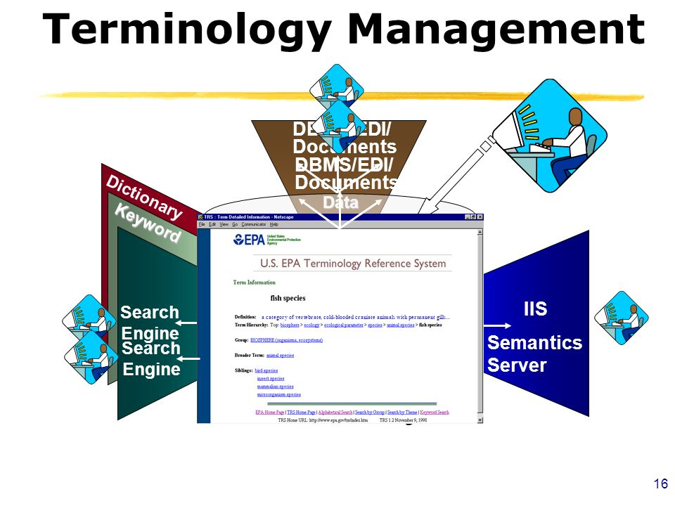 16 Terminology Management Dictionary Keyword OntologyThesaurus Data Elements Search Engine DBMS/EDI/ Documents IIS a category of vertebrate, cold-blooded craniate animals with permanent gills...