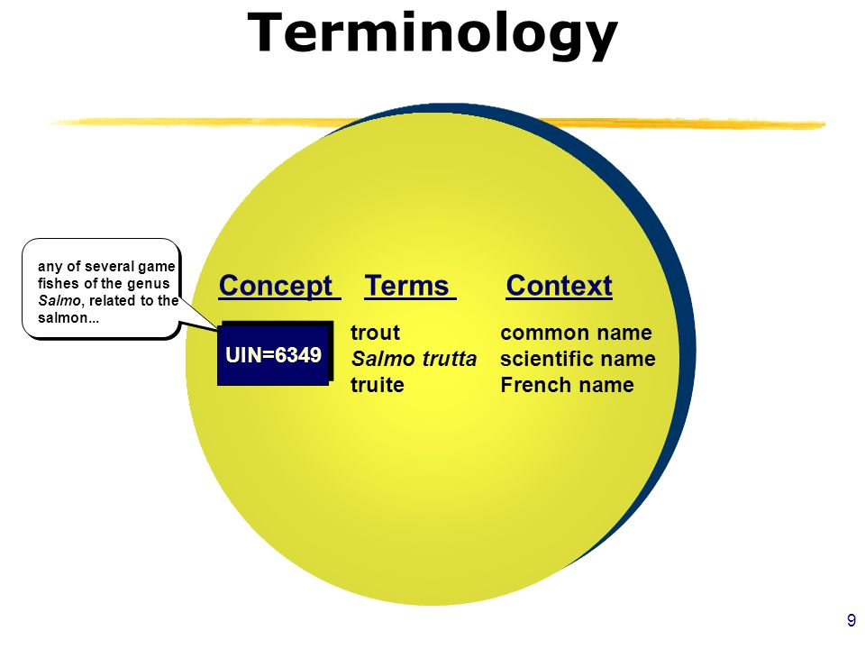 9 Terminology TermsContextConcept trout Salmo trutta truite common name scientific name French name any of several game fishes of the genus Salmo, related to the salmon...