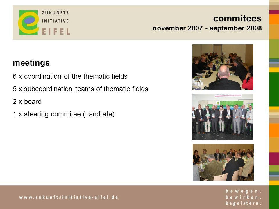 commitees november 2007 - september 2008 meetings 6 x coordination of the thematic fields 5 x subcoordination teams of thematic fields 2 x board 1 x s