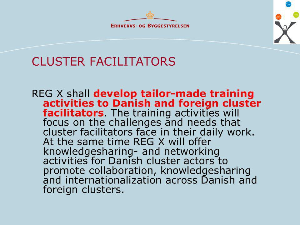 CLUSTER FACILITATORS REG X shall develop tailor-made training activities to Danish and foreign cluster facilitators.