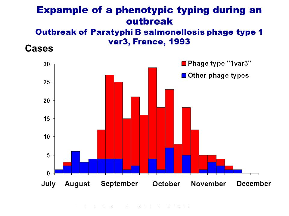 Cases JulyAugust September OctoberNovember December Expample of a phenotypic typing during an outbreak Outbreak of Paratyphi B salmonellosis phage type 1 var3, France, 1993