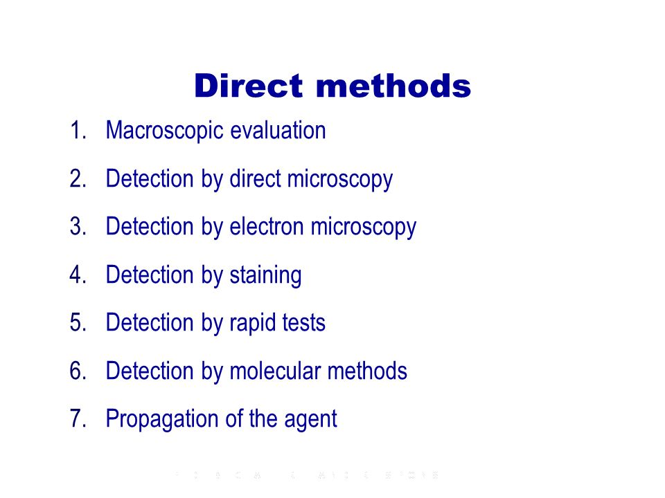 Direct methods 1.Macroscopic evaluation 2.Detection by direct microscopy 3.Detection by electron microscopy 4.Detection by staining 5.Detection by rap