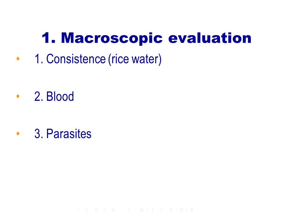 1. Macroscopic evaluation 1. Consistence (rice water) 2. Blood 3. Parasites
