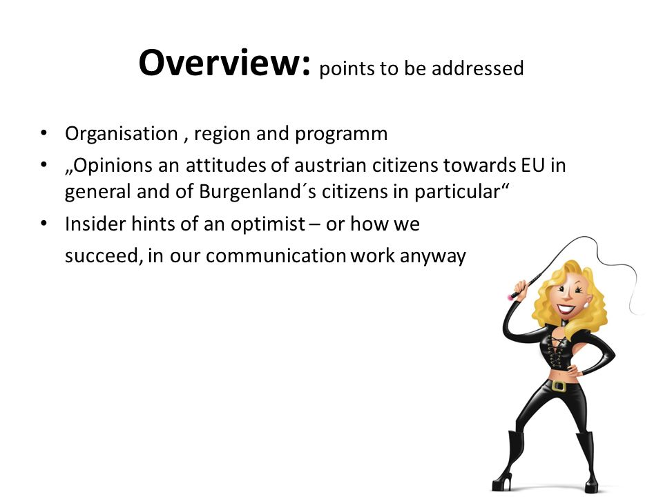 Overview: points to be addressed Organisation, region and programm Opinions an attitudes of austrian citizens towards EU in general and of Burgenland´