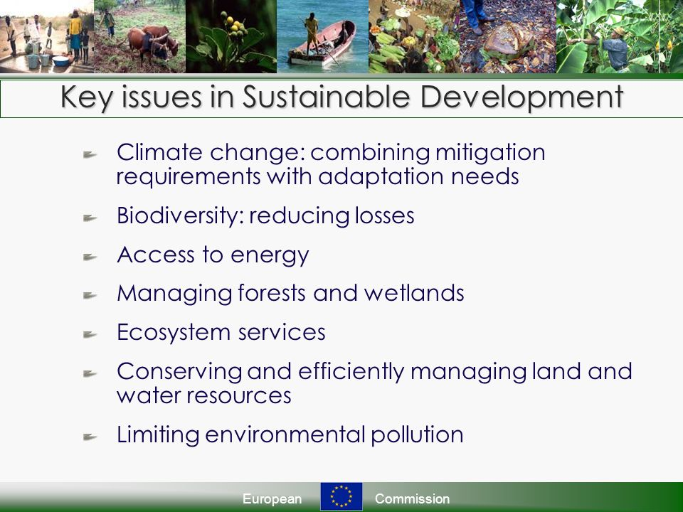 EuropeanCommission Key issues in Sustainable Development Climate change: combining mitigation requirements with adaptation needs Biodiversity: reducing losses Access to energy Managing forests and wetlands Ecosystem services Conserving and efficiently managing land and water resources Limiting environmental pollution