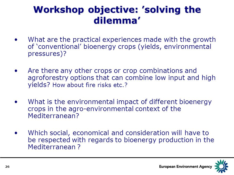 26 Workshop objective: solving the dilemma What are the practical experiences made with the growth of conventional bioenergy crops (yields, environmental pressures).