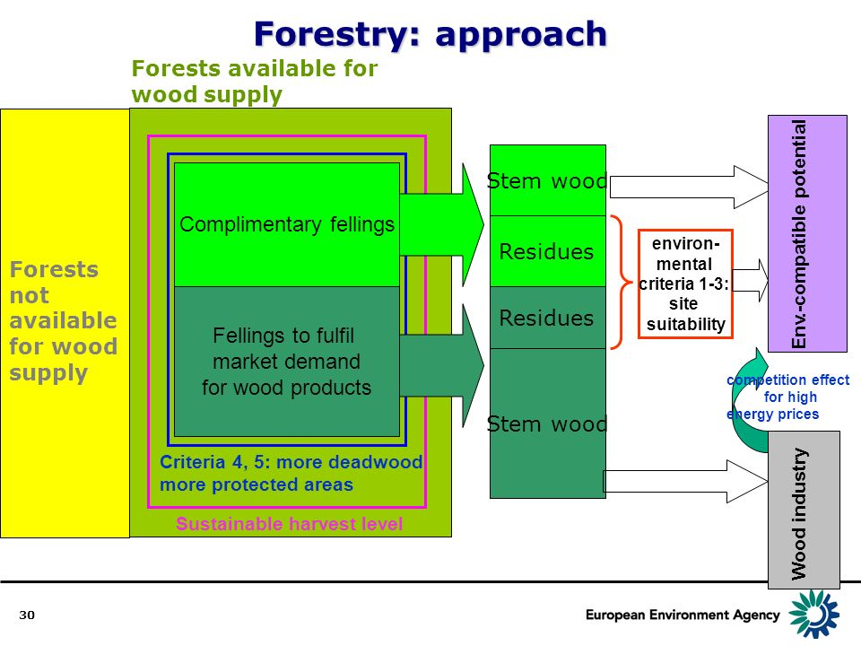 30 Forests available for wood supply Sustainable harvest level Forests not available for wood supply Criteria 4, 5: more deadwood more protected areas Fellings to fulfil market demand for wood products Complimentary fellings Stem wood Residues Stem wood environ- mental criteria 1-3: site suitability Env.-compatible potential Wood industry competition effect for high energy prices Forestry: approach