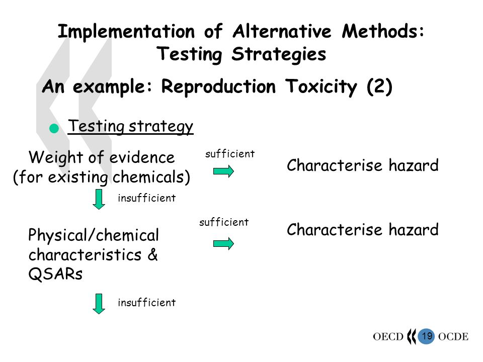 19 Implementation of Alternative Methods: Testing Strategies An example: Reproduction Toxicity (2) Testing strategy Weight of evidence (for existing chemicals) Characterise hazard sufficient Physical/chemical characteristics & QSARs sufficient Characterise hazard insufficient