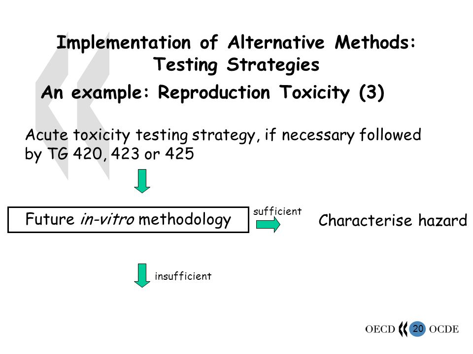 20 Implementation of Alternative Methods: Testing Strategies An example: Reproduction Toxicity (3) Future in-vitro methodology sufficient Characterise hazard insufficient Acute toxicity testing strategy, if necessary followed by TG 420, 423 or 425