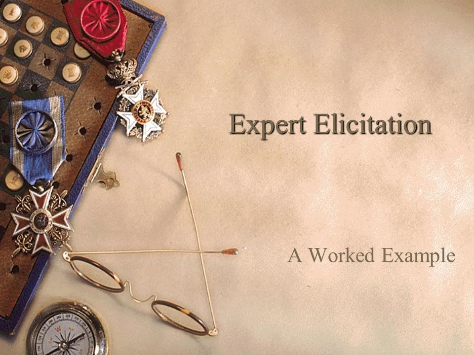 Expert Elicitation A Worked Example