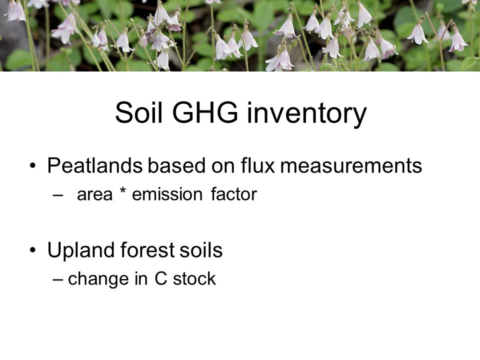 Soil GHG inventory Peatlands based on flux measurements –area * emission factor Upland forest soils –change in C stock